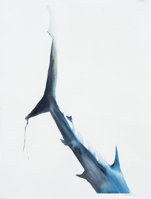 Tail of Woe VI